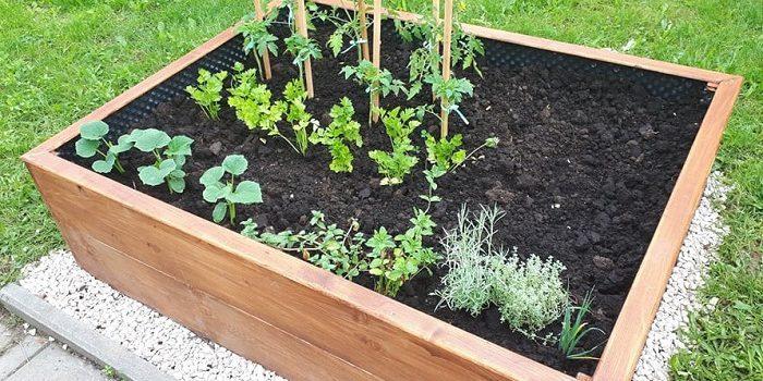 W naszym ogródeczku zrobimy porządki. Potem w miękką ziemię wsiejemy nasionka. Będą się wygrzewać na wiosennym słonku!